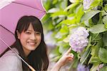 Young adult woman touching Hydrangea Stock Photo - Premium Rights-Managed, Artist: Aflo Relax, Code: 859-03840149