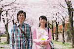 Young Couple under the Cherry blossoms Stock Photo - Premium Rights-Managed, Artist: Aflo Relax, Code: 859-03840167