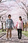 Young Couple under the Cherry blossoms Stock Photo - Premium Rights-Managed, Artist: Aflo Relax, Code: 859-03840203