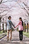 Young Couple under the Cherry blossoms Stock Photo - Premium Rights-Managed, Artist: Aflo Relax, Code: 859-03840206
