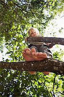 View from below of a child standing in a tree Stock Photo - Premium Royalty-Freenull, Code: 653-03843295