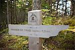 Close up of a mileage marker along the Winner Creek Trail in a Spruce and Hemlock boreal rain forest near Girdwood, Chugach National Forest, Southcentral Alaska, Autumn Stock Photo - Premium Rights-Managed, Artist: AlaskaStock, Code: 854-03845032