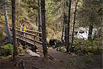 Woman hiking on a bridge that overlooks the falls on Winner Creek Trail in near Girdwood, Chugach National Forest, Southcentral Alaska, Autumn Stock Photo - Premium Rights-Managed, Artist: AlaskaStock, Code: 854-03845033