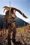 Moose hunter carries a large moose antler rack as he hikes out from his hunt in the Bird Creek drainage area, Chugach National Forest, Chugach Mountains, Southcentral Alaska, Autumn Stock Photo - Premium Rights-Managed, Artist: AlaskaStock, Code: 854-03845038