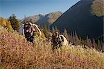 Two male moose hunters carry their trophy moose antlers as they hike out from his hunt in the Bird Creek drainage area, Chugach National Forest, Chugach Mountains, Southcentral Alaska, Autumn Stock Photo - Premium Rights-Managed, Artist: AlaskaStock, Code: 854-03845043