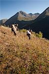 Two male moose hunters carry their trophy moose antlers as they hike out from his hunt in the Bird Creek drainage area, Chugach National Forest, Chugach Mountains, Southcentral Alaska, Autumn Stock Photo - Premium Rights-Managed, Artist: AlaskaStock, Code: 854-03845046