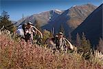 Two male moose hunters carry their trophy moose antlers as they hike out from his hunt in the Bird Creek drainage area, Chugach National Forest, Chugach Mountains, Southcentral Alaska, Autumn Stock Photo - Premium Rights-Managed, Artist: AlaskaStock, Code: 854-03845049