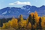Scenic view of mountains and colorful Aspen and Willow trees along the Alaska Highway between Haines and Haines Junction, Yukon Territory, Canada, Autumn Stock Photo - Premium Rights-Managed, Artist: AlaskaStock, Code: 854-03845161