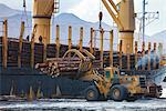 View of log ship being loaded with Sitka Spruce from Chiniak and Sequel Point at LASH dock in Women's Bay, Kodiak Island, Southwest Alaska, Autumn Stock Photo - Premium Rights-Managed, Artist: AlaskaStock, Code: 854-03845264