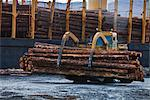 View of log ship being loaded with Sitka Spruce from Chiniak and Sequel Point at LASH dock in Women's Bay, Kodiak Island, Southwest Alaska, Autumn Stock Photo - Premium Rights-Managed, Artist: AlaskaStock, Code: 854-03845268