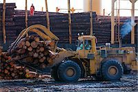 forestry - View of log ship being loaded with Sitka Spruce from Chiniak and Sequel Point at LASH dock in Women's Bay, Kodiak Island, Southwest Alaska, Autumn Stock Photo - Premium Rights-Managednull, Code: 854-03845270