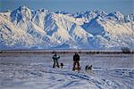 Two recreational dog mushers mushing near Wasilla with Chugach Mountains in the background, Mat-Su Valley, Southcentral Alaska, Winter Stock Photo - Premium Rights-Managed, Artist: AlaskaStock, Code: 854-03845841