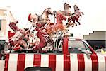Carousel Horses in Back of Pick-Up Truck Stock Photo - Premium Rights-Managed, Artist: Mark Peter Drolet, Code: 700-03849037