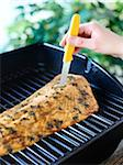 Woman Testing Doneness of Salmon on Barbeque Stock Photo - Premium Royalty-Free, Artist: Yvonne Duivenvoorden, Code: 600-03849746