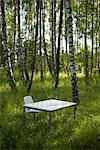 A white desk in a forest, Sweden. Stock Photo - Premium Royalty-Free, Artist: Minden Pictures, Code: 6102-03866151