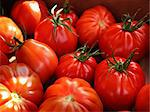 Beef tomatoes. Stock Photo - Premium Royalty-Free, Artist: foodanddrinkphotos, Code: 6102-03867399