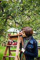 single fruits tree - A woman picking apples, Sweden. Stock Photo - Premium Royalty-Freenull, Code: 6102-03867581