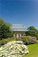 The Palm House surrounded by rhododendrons and hydrangeas at The Royal Botanic Garden, Edinburgh, Scotland, United Kingdom, Europe Stock Photo - Premium Rights-Managednull, Code: 841-03867800