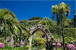 A stone arch, remains of the 12 century Priory of St. Nicholas, surrounded by palm trees and subtropical succulents in The Abbey Gardens, Tresco, Isles of Scilly, United Kingdom, Europe Stock Photo - Premium Rights-Managed, Artist: Robert Harding Images, Code: 841-03867809