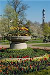 Spring display of tulips, Regent's Park, London NW1, England, United Kingdom, Europe Stock Photo - Premium Rights-Managed, Artist: Robert Harding Images, Code: 841-03868162