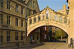 The Bridge of Sighs archway linking two buildings of Hertford College, New College Lane, Oxford, Oxfordshire, England, United Kingdom, Europe Stock Photo - Premium Rights-Managed, Artist: Robert Harding Images, Code: 841-03868199