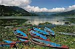 Phewa Tal (Phewa Lake), Pokhara, Gandaki, Western Region (Pashchimanchal), Nepal, Asia Stock Photo - Premium Rights-Managed, Artist: Robert Harding Images, Code: 841-03868879