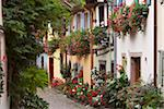 Street in the heritage village of Eguisheim, Alsatian Wine Road, Haut Rhin, Alsace, France, Europe Stock Photo - Premium Rights-Managed, Artist: Robert Harding Images, Code: 841-03869434