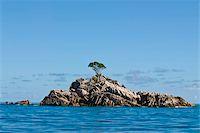 seychelles - Little uninhabitated island near Ile aux Cocos, Seychelles, Indian Ocean, Africa Stock Photo - Premium Rights-Managednull, Code: 841-03871144