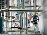 Workers inspecting goat yogurt in dairy Stock Photo - Premium Royalty-Freenull, Code: 649-03883766