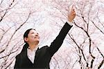 Businesswoman Standing Under Cherry Trees And Pointing Up Stock Photo - Premium Rights-Managed, Artist: Aflo Relax, Code: 859-03884971