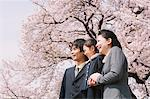 Japanese Family Under Blooming Cherry Trees Stock Photo - Premium Rights-Managed, Artist: Aflo Relax, Code: 859-03884999