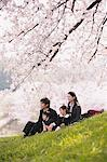 Japanese Family Having Fun In Meadow Stock Photo - Premium Rights-Managed, Artist: Aflo Relax, Code: 859-03885002