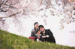 Japanese Family Having Fun In Meadow Stock Photo - Premium Rights-Managed, Artist: Aflo Relax, Code: 859-03885003