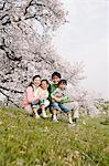 Family Having Fun In Meadow Stock Photo - Premium Rights-Managed, Artist: Aflo Relax, Code: 859-03885008