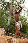 Burundi. A man cuts a tree into planks in a traditional sawpit. Stock Photo - Premium Rights-Managed, Artist: AWL Images, Code: 862-03887457