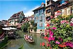 Petite Venice, Colmar, Alsace, France Stock Photo - Premium Rights-Managed, Artist: AWL Images, Code: 862-03887758