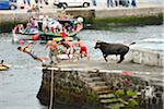 People flee the bull in a bullfight (tourada a corda) at Porto Martins. Terceira, Azores islands, Portugal Stock Photo - Premium Rights-Managed, Artist: AWL Images, Code: 862-03889245
