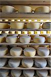 Canada, manufacturing house of the famous Sao Jorge traditional cheese, Santo Amaro, Azores islands, Portugal