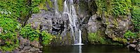 flores - A waterfall at Faja Grande. Poco do Bacalhau. Flores, Azores islands, Portugal Stock Photo - Premium Rights-Managednull, Code: 862-03889285