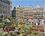 Grand place with flower market, Brussels, Belgium Stock Photo - Premium Rights-Managed, Artist: Raimund Linke, Code: 700-03891073