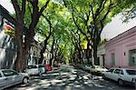 Street in Palermo Viejo, Buenos Aires, Argentina Stock Photo - Premium Royalty-Free, Artist: Garry518                      , Code: 614-03902152