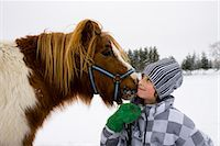 preteen kissing - Boy with a horse, Sweden. Stock Photo - Premium Royalty-Freenull, Code: 6102-03905100