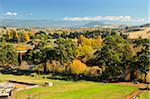 Farmland, Bushy Park, Tasmania, Australia Stock Photo - Premium Rights-Managed, Artist: Jochen Schlenker, Code: 700-03907004