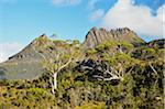 Cradle Mountain, Cradle Mountain-Lake St Clair National Park, UNESCO World Heritage Area, Tasmania, Australia Stock Photo - Premium Royalty-Free, Artist: Jochen Schlenker, Code: 600-03907286