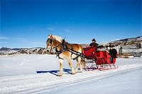 Sleigh ride through winter landscape. Stock Photo - Royalty-Freenull, Code: 400-03926875