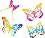 colorful butterflies on white background