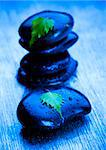 Zen is a freshness and the way of life. Stock Photo - Royalty-Free, Artist: JanPietruszka, Code: 400-03934393