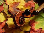 detail of violin scroll and neck over multi-colored autumn leaves... from maple tree to maple violin… German-made copy of Josef Guarnerius Stock Photo - Royalty-Free, Artist: AardLumens, Code: 400-03957486