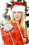 Beautiful young woman next to christmas tree wearing santas hat on white background Stock Photo - Royalty-Free, Artist: dash, Code: 400-03960033