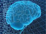 3d rendered illustration of a binary code and a human brain Stock Photo - Royalty-Free, Artist: Eraxion, Code: 400-03966134